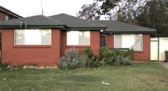 8 Hawkesbury Street Fairfield West NSW 2165