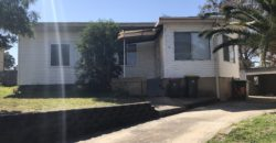 7 Moomin Pl, Busby NSW 2168