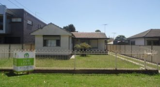 58 The Avenue, Canley Vale NSW 2166